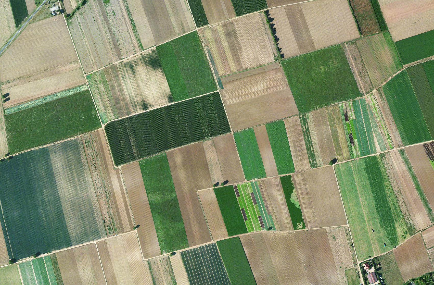 Aerial mapping of fields